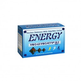 Energy memory integratore...
